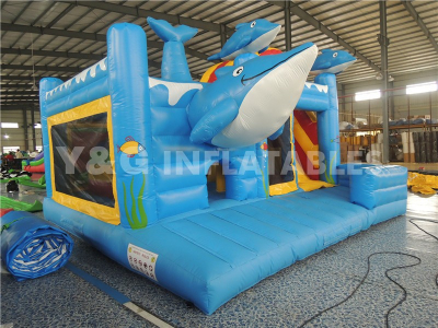Dolphin castle with slide   YCO-33